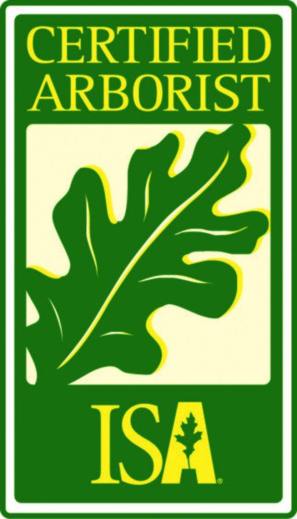 San Antonio certified arborist