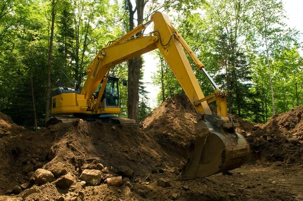 Construction Mitigation Around Trees