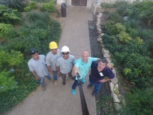 Arborists & Tree Crew At The Alamo
